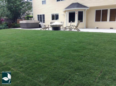 New Lawn Installation