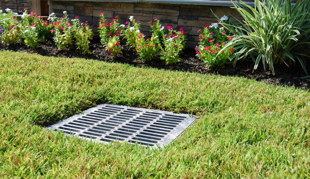 Federal Way French Drains