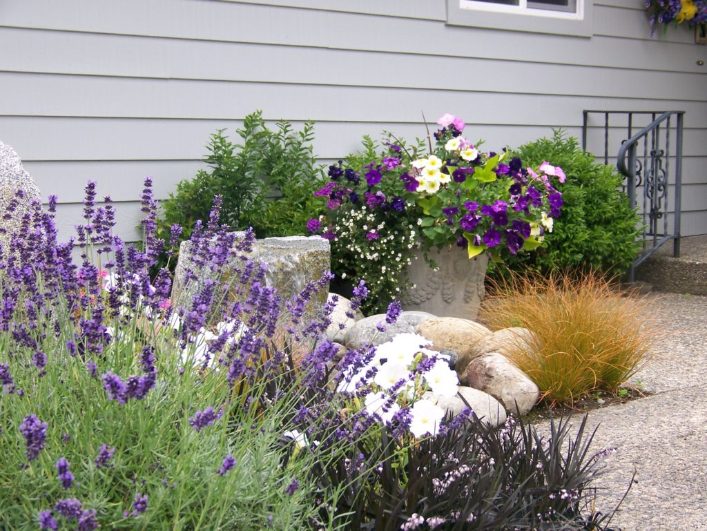 Landscape Design Federal Way WA