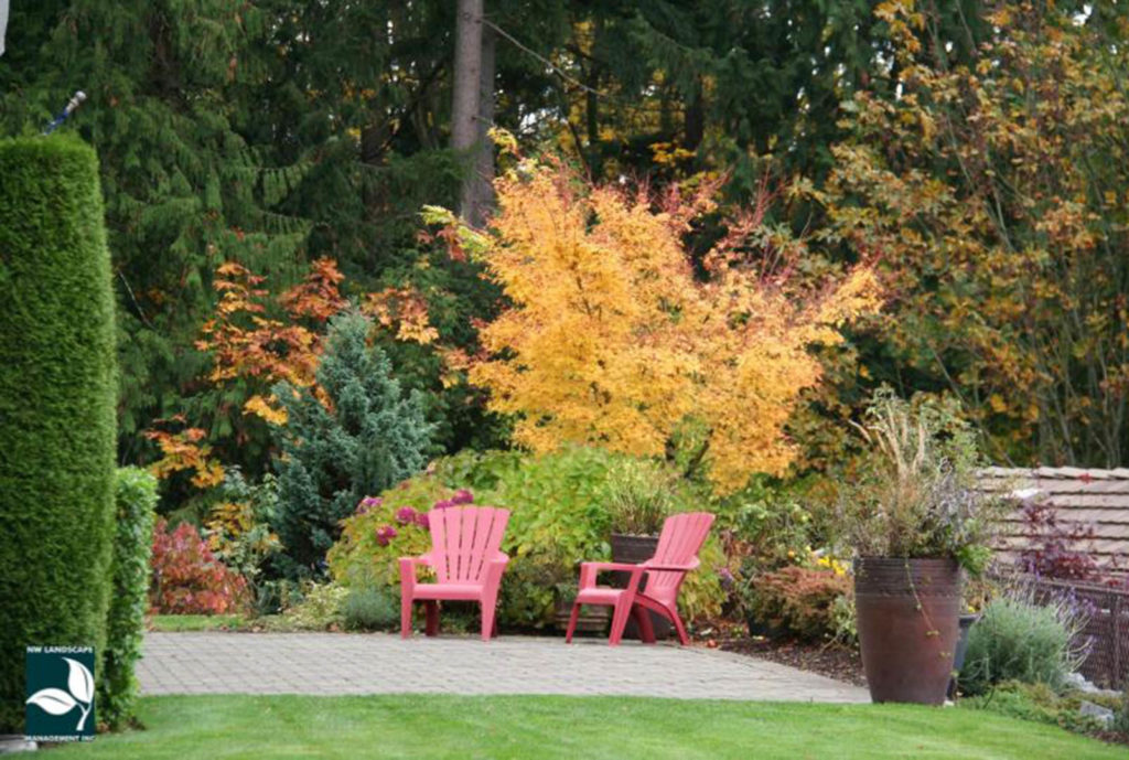Landscape Maintenance Covington WA