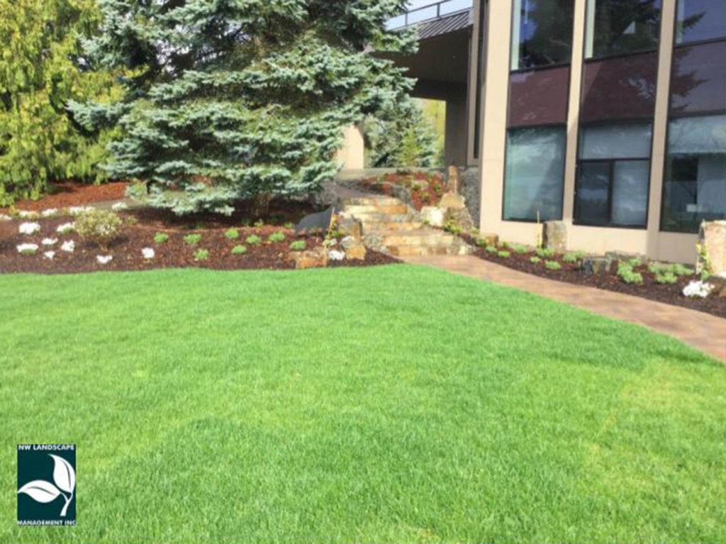 Lawn Service Edgewood WA