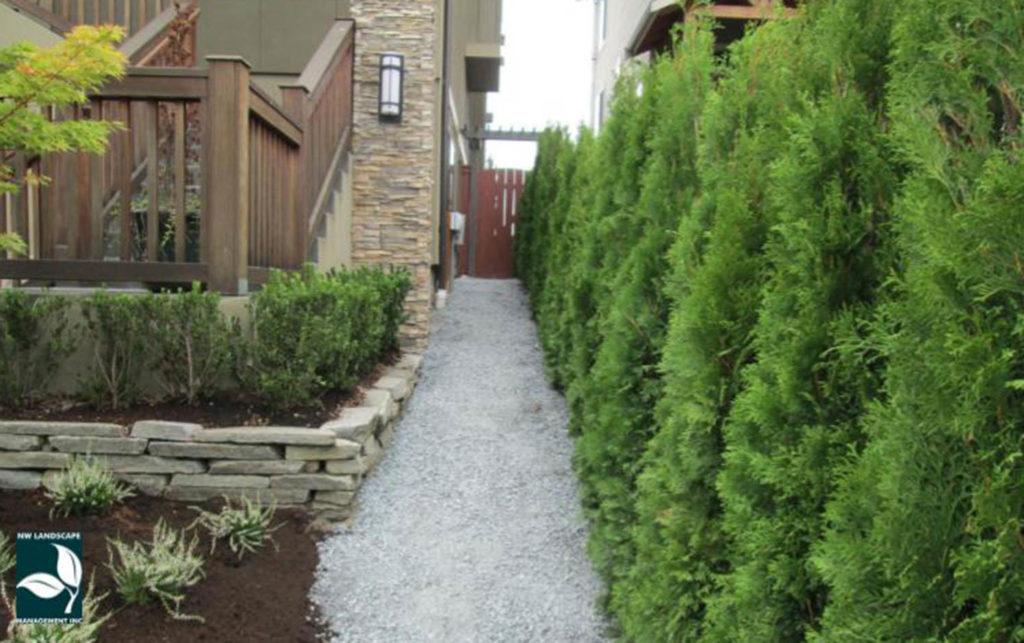 Yard Drainage Edgewood WA