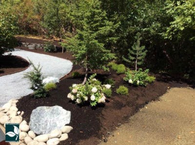 Gig Harbor Landscape Maintenance
