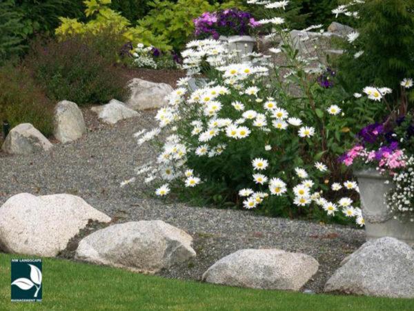 Landscape Maintenance Puyallup WA