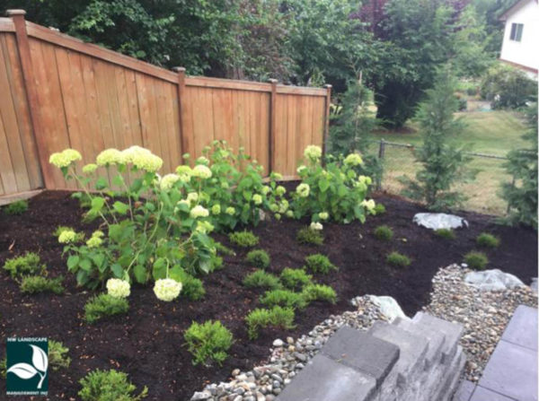 Landscape Maintenance SeaTac WA