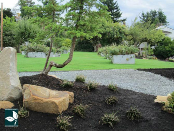 Lawn Care Normandy Park WA