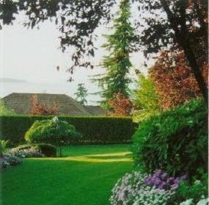 Lawn Service Sumner