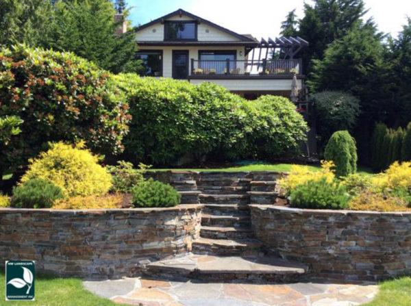 Lawn Service West Seattle