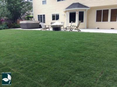 New Lawn Installation Orting WA