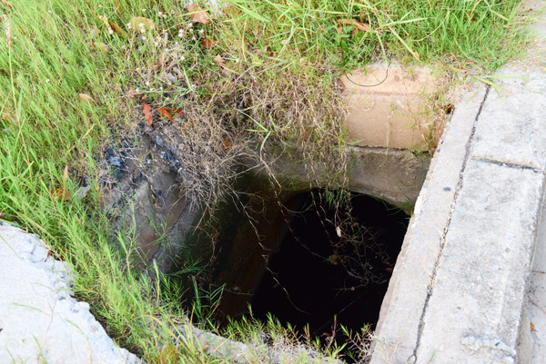 Normandy Park Drainage Solutions