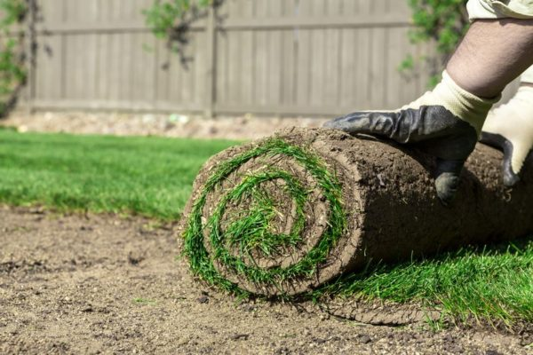 Sod Installation Ruston