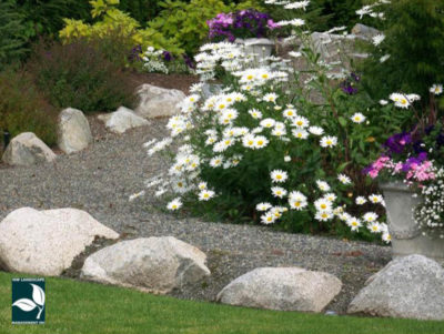 Sumner Landscape Maintenance