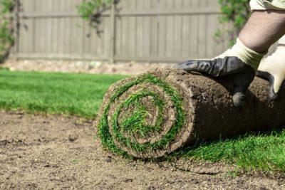 Grass Installation Milton
