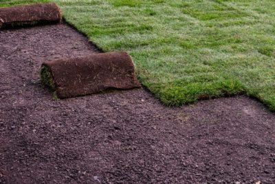 Grass Lawn Milton