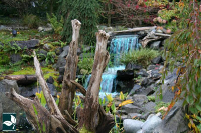 Lake Tapps Landscape Design