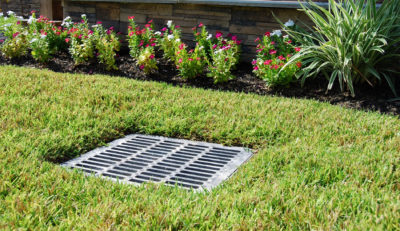 Maple Valley French Drain