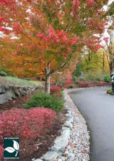 Covington Landscape Design